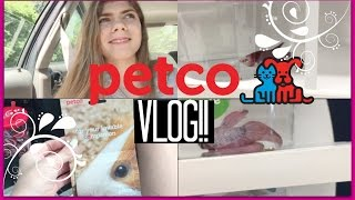PETCO VLOG!! BETTA FISH AND GIVEAWAY SHOPPING!!