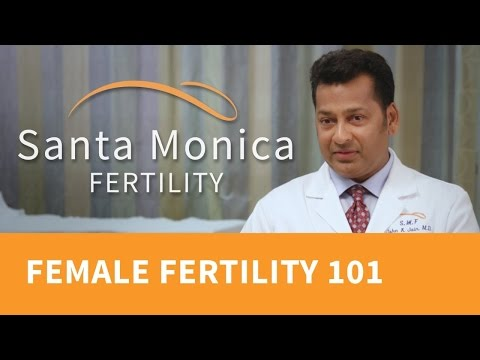 what-causes-infertility?-about-female-infertility-and-fertility-tests