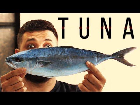 Разделка Тунца | Анбоксинг Рыбы
