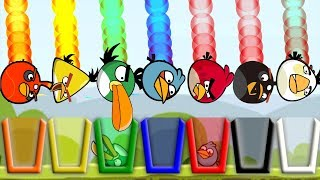 Angry Birds Drink Water 2 - GIVE COLOR WATER FOR EVERY DIFFERENT BIRDS LEVELS!