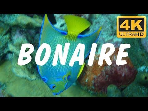 BONAIRE in 4K