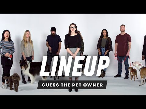 Match the Dog to Their Owner   Lineup   Cut