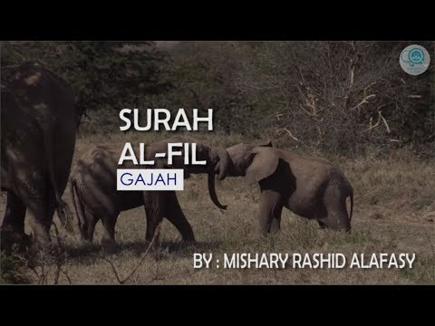 Surah Al - Fil dan Terjemahannya - Mishary Rashid Alafasy