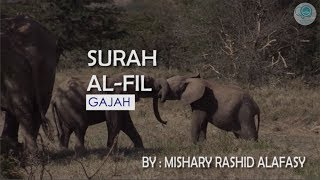 Surah Al-Fil dan Terjemahannya - Mishary Rashid Alafasy