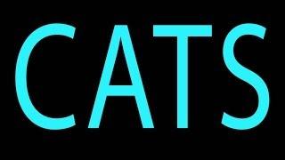 HBO's GIRLS Parody - CATS