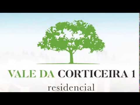 Vale da Corticeira 1  - Janeiro 2019