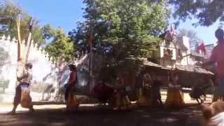 Kc Renaissance Festival Corgi Cam