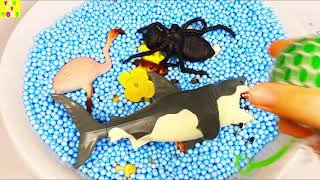 Learn Colors with Animals Squishy Balls Farm Surprise Toy For Kid Child Education Video for Kids