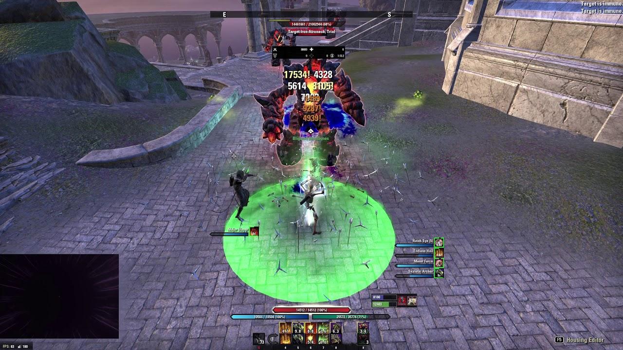 Stamina Necromancer Bow Build PvE DPS for Elder Scrolls Online