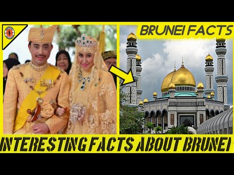 Top Most 5 Amazing Facts about BRUNEI // Fantastic Five // BRUNEI