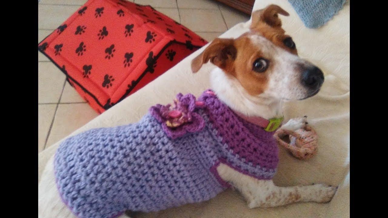 Crochet Dog Sweater Coat Any Size Tutorial Youtube