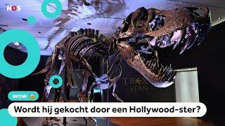 Te koop: Het skelet van T. rex Stan