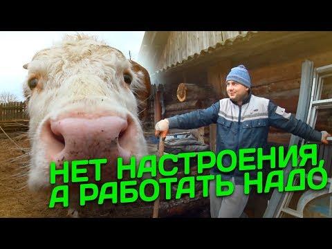 видео: Нет настроения, а работать надо // Жизнь в деревне
