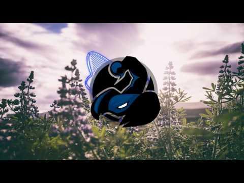 Hibshi - Cold Beer (feat. AiMEE)