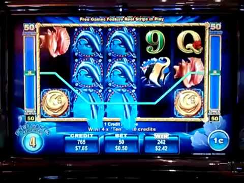 50 dolphins slot machine