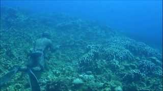 Spearfishing in Saipan with Felix T  Sasamoto Jr