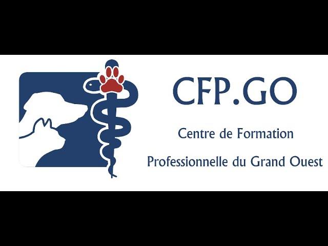 CFPGO - Session A 2021- 2ème semaine