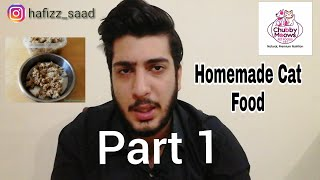 Homemade Cat Food | persian cat food recipe |how to make cheap homemade cat food at home part 1|