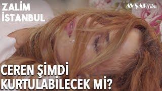 Ceren Nedim'e İşkence Ederken Yakalandı! Ceren'in Sonu Ne Olacak? | Zalim İstanbul 13. Bölüm
