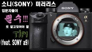 [0805AG] 소니(sony)미러리스(feat.son…