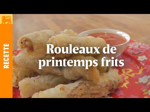 rouleaux-de-printemps-frits