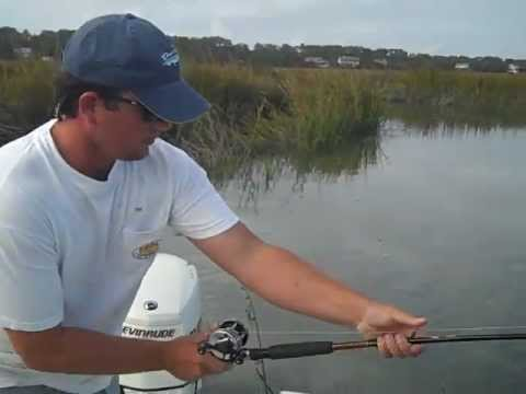 Tailing fish savannah fly inshore fishing in savammah for Flying fish savannah ga