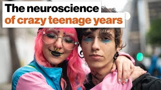 The teenage brain: Why some years are (a lot) crazier than others | Robert Sapolsky
