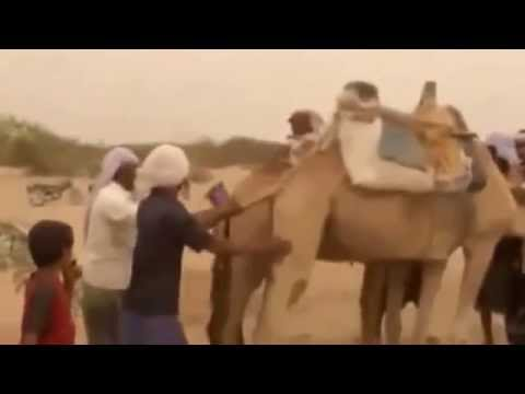Jump over the Camels it sport tribes in Yemen