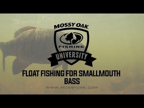 Summer Bass Fishing Patterns   KVD Fishing Tips - YouTube