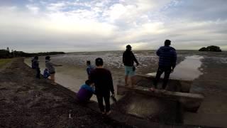 澳洲-旅遊影片
