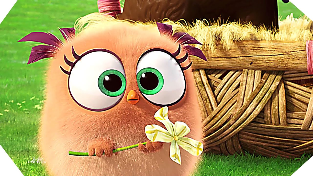 The HATCHLINGS Wish You A Happy Easter!   ANGRY BIRDS   YouTube