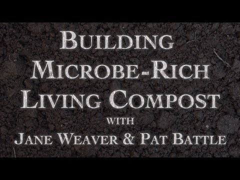 Building Microbe-Rich Living Compost Part 1