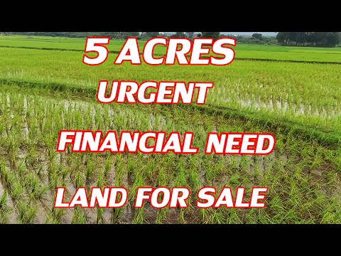 5 ACRES LAND FOR SALE | COMPACT PROPERTY SALES | FULL INFORMATION FOR NEW LAND BUYERS | BUY & SELL