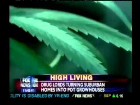 Marijuana Remix Draft 1