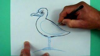 Wie zeichnet man eine Möve? Zeichnen für Kinder