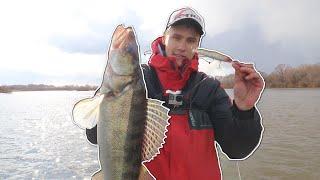 Весенний СУДАК ВОБЛЕР или ДЖИГ Рыбалка Весной на Реке
