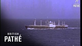 Cargo Ship At Sea   (1964)