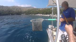 Day 2 kassiopi fishing trip with Kostas, Will, Keane and Evan ( will on the rod)
