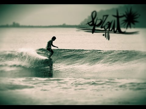 surf Longboard Sprout