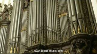 Widor - 'Mattheus-Final' from 'Bach's Memento', played by Peter Van de Velde; Antwerp Cathedral