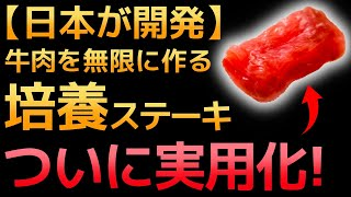【衝撃】日清が開発した「食料危機を救う新食材」に世界が震えた!