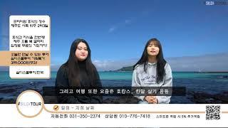 실디스쿨투어 OREUM BOOK GALLERY 여행 패…
