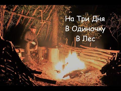 3 дня Сам  в  Лесу ,  без Палатки и Тента , Укрытие без Гвоздей/Веревки, Таежный Костер , Бушкрафт