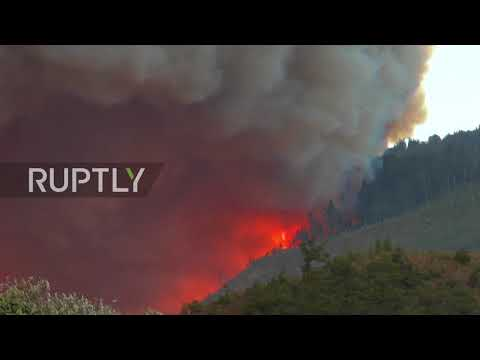 Georgia: Foreign firefighting helicopters tackle forest fire raging in Borjomi region