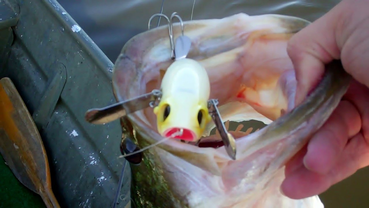 new pompadour by jackall - top water bass fishing - youtube, Soft Baits