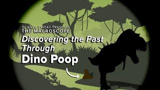 Discovering the Past Through Dinosaur Poop