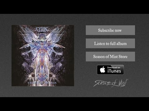 Cynic - The Space For This