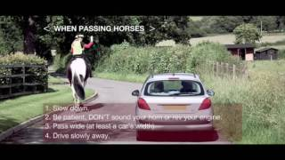 "Roads Safety ""Horse Rider Safety"" CBO/PSFF144/040  (available in HD)"