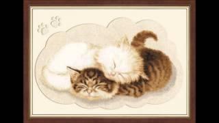 Коты. Самые оригинальные идеи оформления вышивки