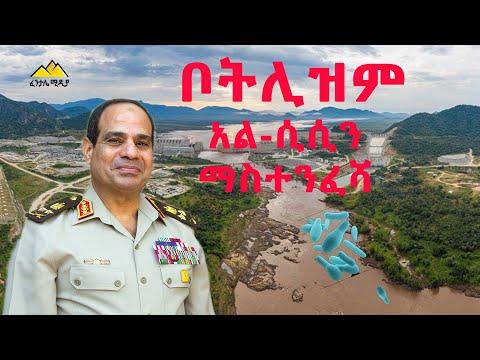 ቦትሊዝም፤ አል-ሲሲን ማስተንፈሻ|Egypt| Ethiopia| Sudan|USA|European Union|UN security council| António Guterres